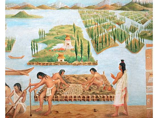 Ap world history wiki chinampas for What is terrace farming definition